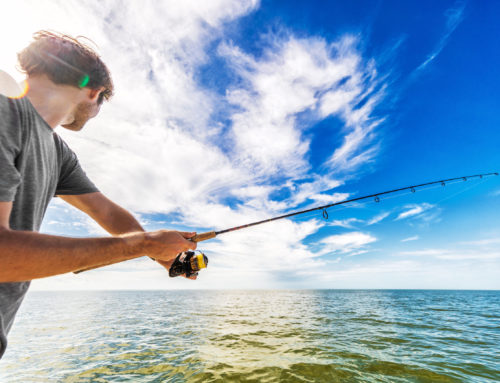 If You Go Phishing, Make Sure You Are Not The Bait